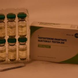 Testen-250 (Testosterone Enanthate)